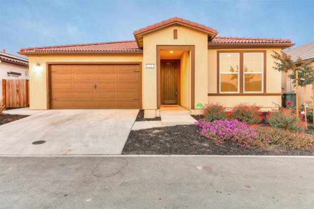 421 Segovia Dr, Hollister, CA 95023 (#ML81754068) :: Strock Real Estate