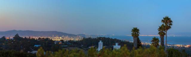 2600 Skyfarm Dr, Hillsborough, CA 94010 (#ML81754181) :: The Kulda Real Estate Group