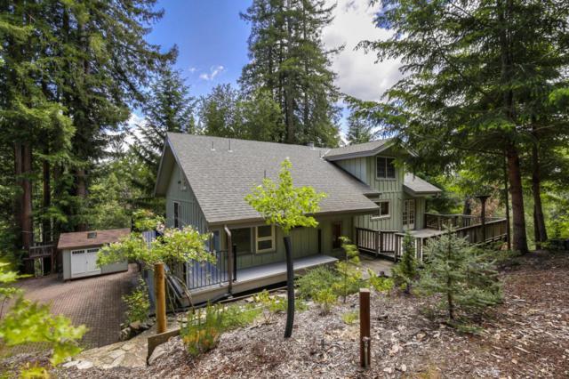 335 Pike Rd, Ben Lomond, CA 95005 (#ML81754832) :: Strock Real Estate