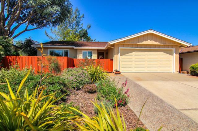 1658 Canna Ln, San Jose, CA 95124 (#ML81754918) :: The Warfel Gardin Group