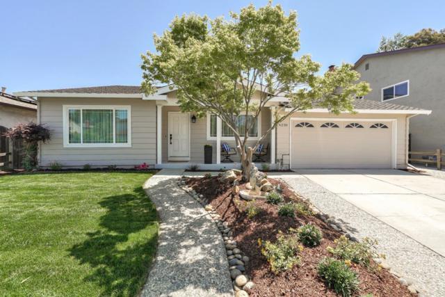 6230 Purple Hills Dr, San Jose, CA 95119 (#ML81754983) :: The Warfel Gardin Group
