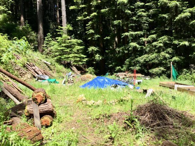 0 Sequoia, Felton, CA 95018 (#ML81755013) :: Strock Real Estate