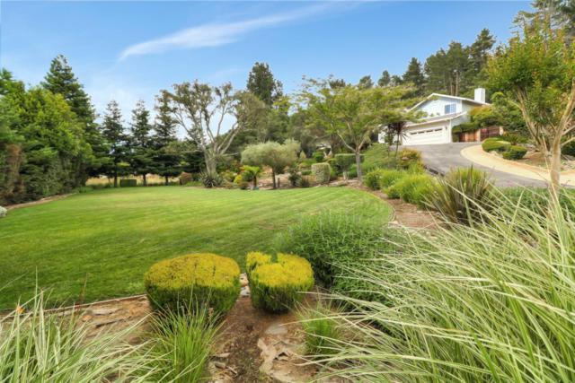 496 Carpenteria Rd, Aromas, CA 95004 (#ML81755449) :: Intero Real Estate