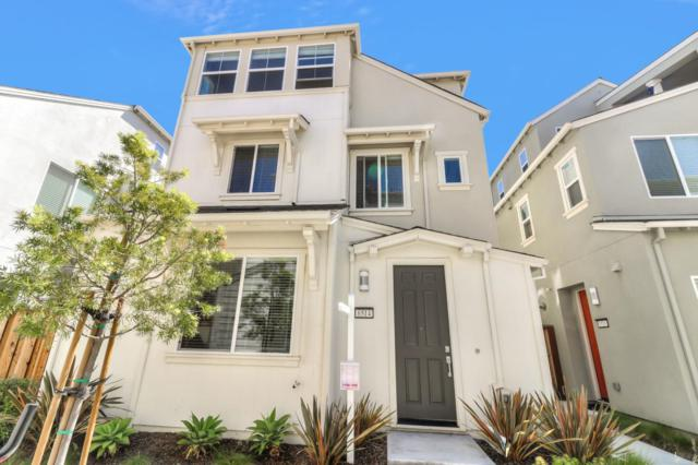 8514 Bayshores Ave, Newark, CA 94560 (#ML81755541) :: Strock Real Estate