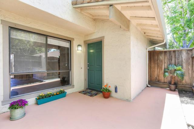 164 Peach Ter, Santa Cruz, CA 95060 (#ML81756025) :: Strock Real Estate