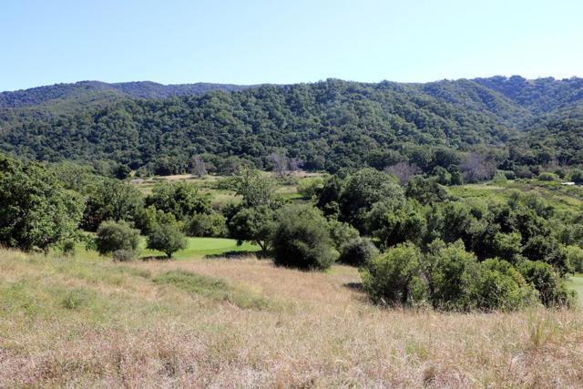 40 Pronghorn Run, Carmel, CA 93923 (#ML81756032) :: Strock Real Estate