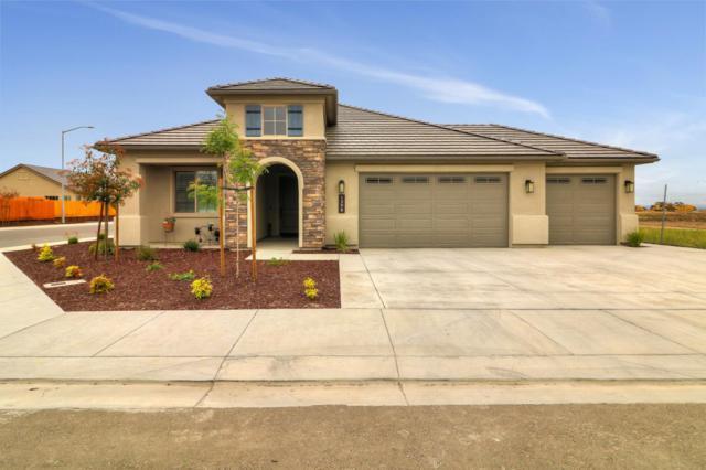 1398 Azalea Ct, Hollister, CA 95023 (#ML81756046) :: Strock Real Estate