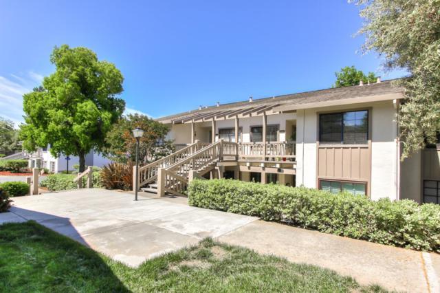5096 Cribari Pl, San Jose, CA 95135 (#ML81756057) :: Live Play Silicon Valley