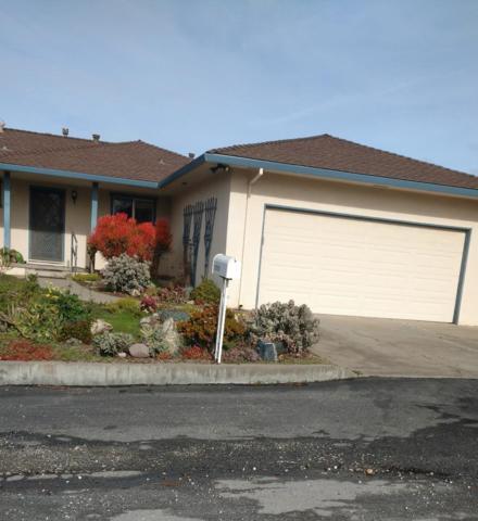 1250 Hilltop Rd, Hollister, CA 95023 (#ML81756061) :: Strock Real Estate
