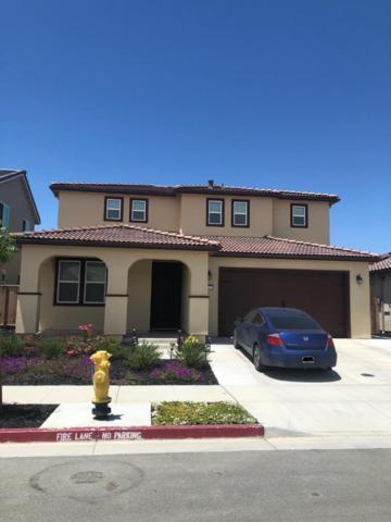 452 Segovia Dr, Hollister, CA 95023 (#ML81756316) :: Strock Real Estate