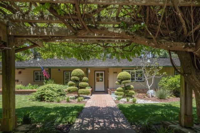 918 Laurelwood Dr, San Mateo, CA 94403 (#ML81756633) :: The Kulda Real Estate Group