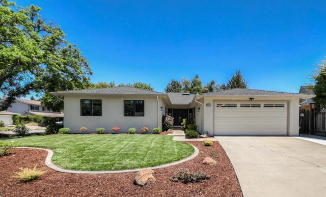 6602 Mount Holly Dr, San Jose, CA 95120 (#ML81756792) :: Strock Real Estate