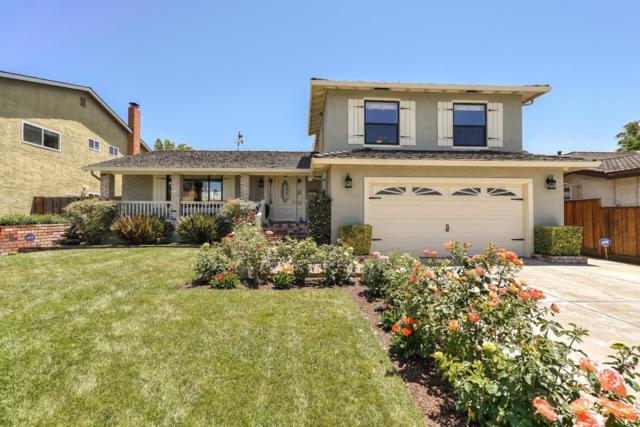214 Paraiso Ct, San Jose, CA 95119 (#ML81756829) :: Strock Real Estate