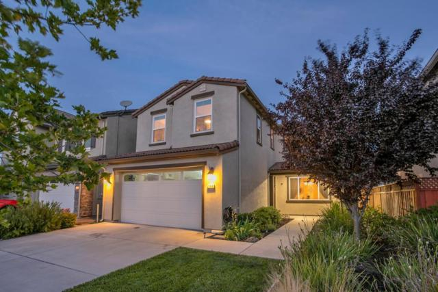 240 Mystery Creek Ct, Morgan Hill, CA 95037 (#ML81757030) :: The Goss Real Estate Group, Keller Williams Bay Area Estates