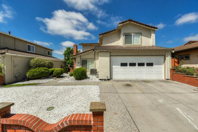 521 Rough And Ready Rd, San Jose, CA 95133 (#ML81757104) :: Strock Real Estate