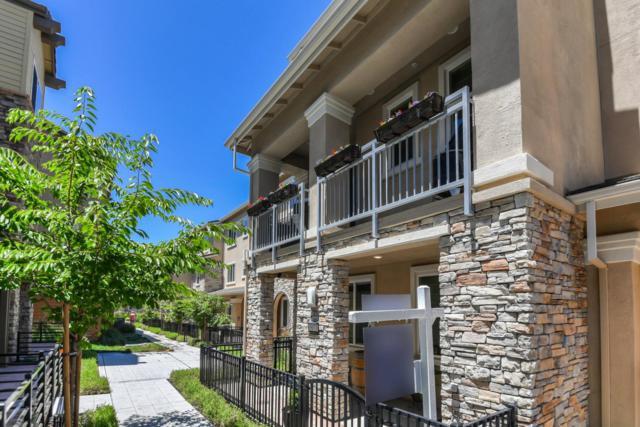 5973 Larkstone Loop, San Jose, CA 95123 (#ML81757662) :: Strock Real Estate