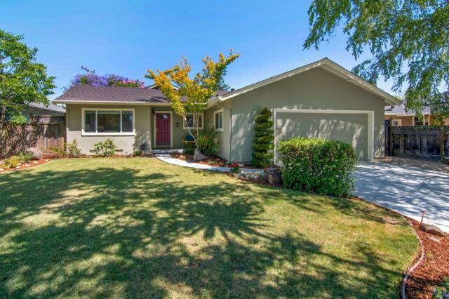 1843 Flood Dr, San Jose, CA 95124 (#ML81757684) :: Strock Real Estate