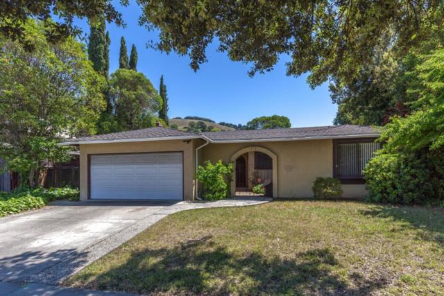 572 Curie Dr, San Jose, CA 95123 (#ML81757727) :: Brett Jennings Real Estate Experts