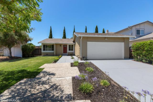 1105 Nicklaus Ave, Milpitas, CA 95035 (#ML81757730) :: Strock Real Estate