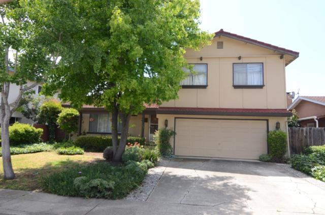 223 Perry St, Milpitas, CA 95035 (#ML81757766) :: Strock Real Estate