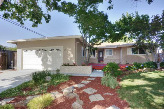 25 Butler St, Milpitas, CA 95035 (#ML81757793) :: Strock Real Estate