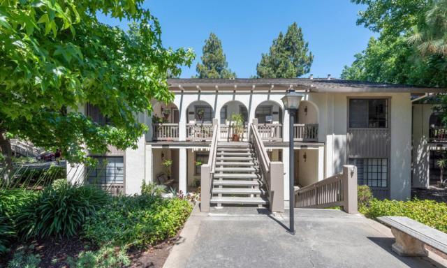 5243 Cribari Hls, San Jose, CA 95135 (#ML81757861) :: Strock Real Estate