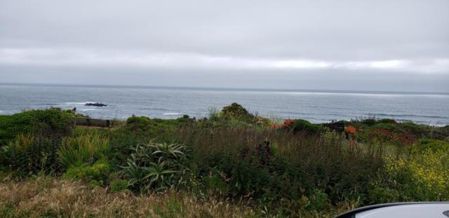 000 Ocean Blvd, Moss Beach, CA 94038 (#ML81757870) :: The Kulda Real Estate Group