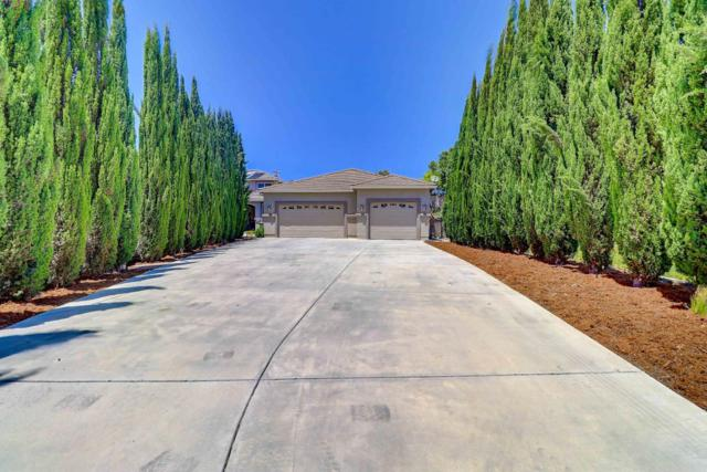658 Oak Canyon Ct, Hollister, CA 95023 (#ML81757917) :: The Warfel Gardin Group