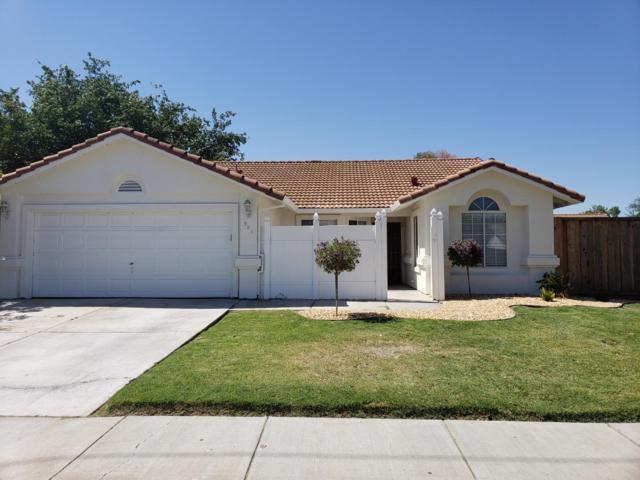 905 Overland Rd, Los Banos, CA 93635 (#ML81757920) :: Strock Real Estate
