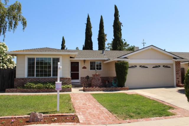 454 Ariel Dr, San Jose, CA 95123 (#ML81758028) :: Strock Real Estate