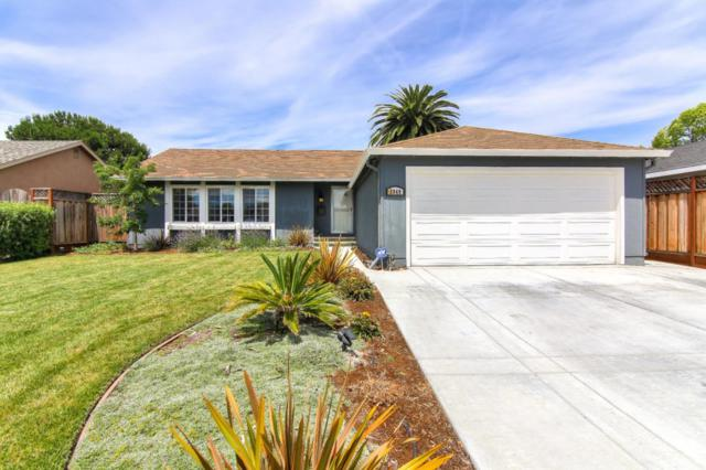 5949 Tandera Ave, San Jose, CA 95123 (#ML81758149) :: Strock Real Estate