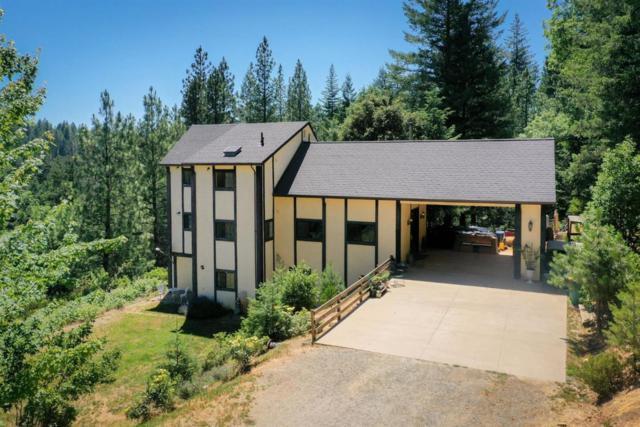 2586 Tinsel Trl, GEORGETOWN, CA 95634 (#ML81758209) :: Brett Jennings Real Estate Experts