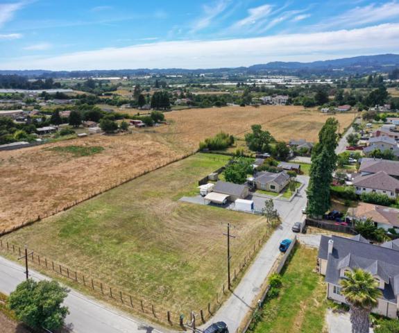 11 Heiner Rd, Watsonville, CA 95076 (#ML81758944) :: Strock Real Estate