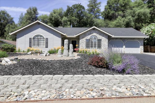 869 Rocky Hill Rd, Murphys, CA 95247 (#ML81759201) :: Strock Real Estate