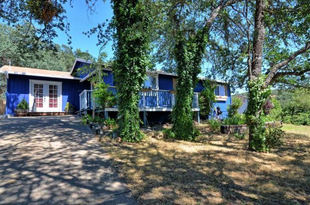 4149 Cedar Cir, Angels Camp, CA 95222 (#ML81759295) :: Strock Real Estate