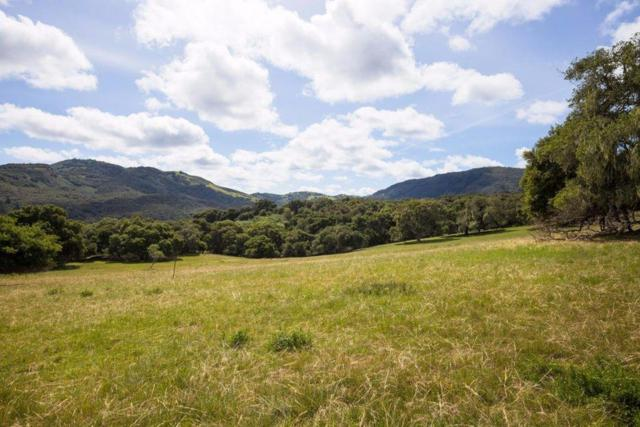 2 Holding Field Run, Carmel Valley, CA 93923 (#ML81759297) :: Keller Williams - The Rose Group