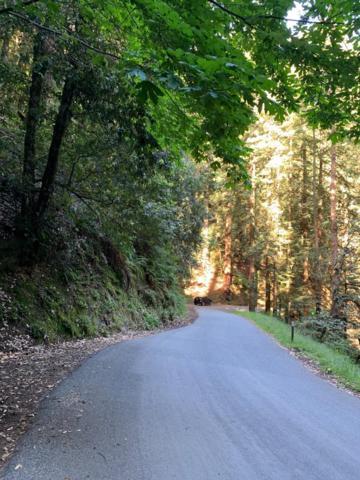 0 Tunitas Creek Rd, Woodside, CA 94062 (#ML81759553) :: The Kulda Real Estate Group