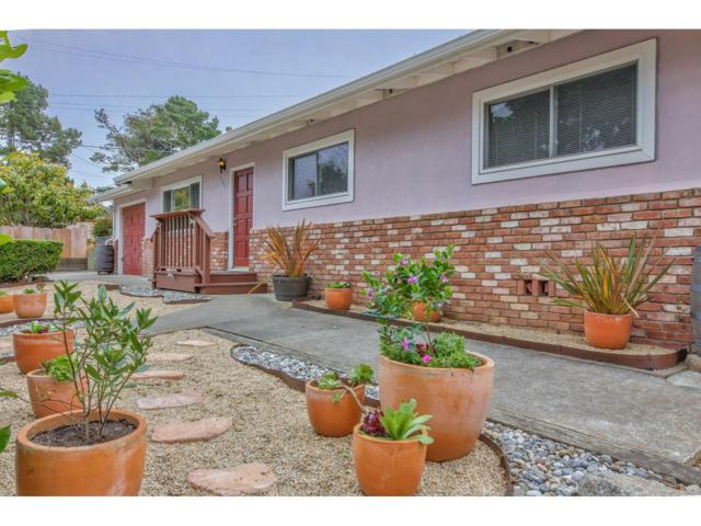 1003 David Ave, Pacific Grove, CA 93950 (#ML81759618) :: The Goss Real Estate Group, Keller Williams Bay Area Estates