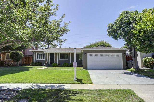 2478 Tulip Rd, San Jose, CA 95128 (#ML81759989) :: Strock Real Estate