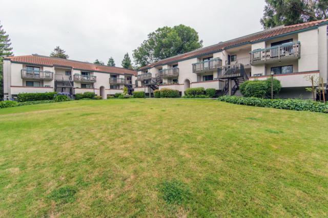 709 San Conrado Ter 2, Sunnyvale, CA 94085 (#ML81760150) :: The Goss Real Estate Group, Keller Williams Bay Area Estates