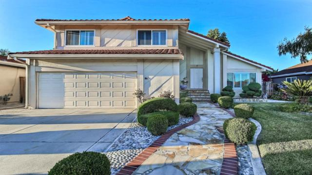 5709 Silver Leaf Rd, San Jose, CA 95138 (#ML81760370) :: Intero Real Estate