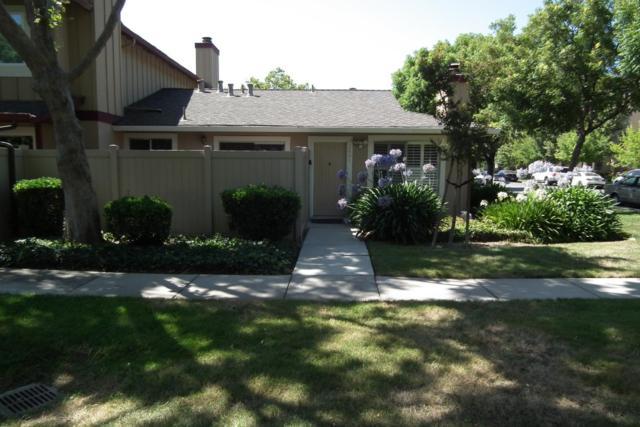 2491 Clear Spring Ct, San Jose, CA 95133 (#ML81760490) :: Strock Real Estate