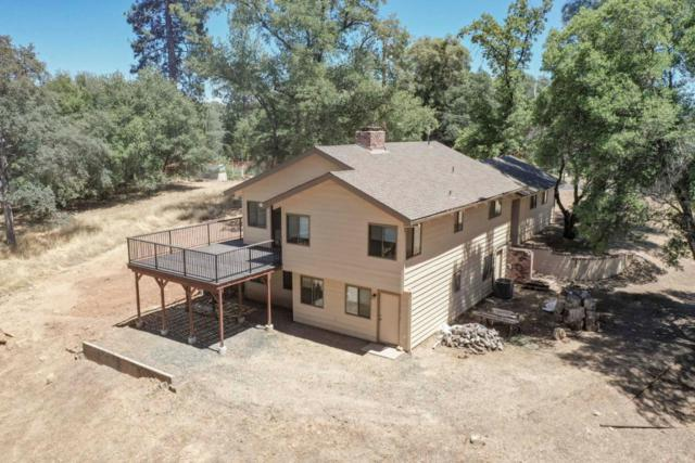 13333 Mule Ct, Groveland, CA 95321 (#ML81760493) :: Strock Real Estate