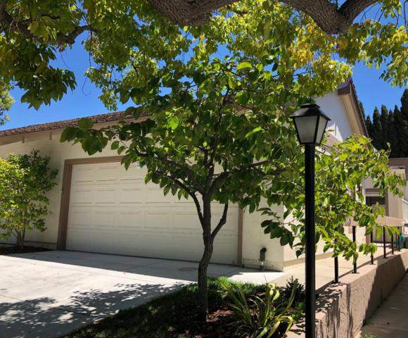 6349 Whaley Dr, San Jose, CA 95135 (#ML81760574) :: The Warfel Gardin Group