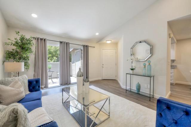 251 Shadow Dance Dr, San Jose, CA 95110 (#ML81760681) :: The Kulda Real Estate Group