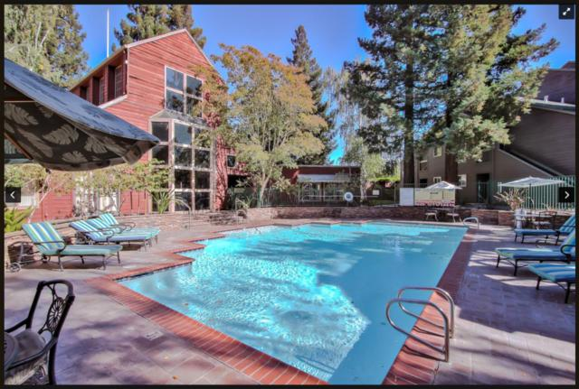 674 Teatree Ct, San Jose, CA 95128 (#ML81760716) :: Live Play Silicon Valley