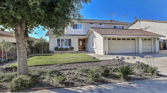 1825 Cape Horn Dr, San Jose, CA 95133 (#ML81761020) :: The Warfel Gardin Group