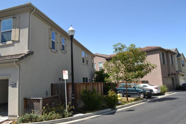 163 Cobblestone Loop, Milpitas, CA 95035 (#ML81761109) :: The Warfel Gardin Group
