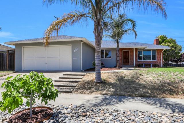 1623 Matson, San Jose, CA 95124 (#ML81761286) :: The Kulda Real Estate Group