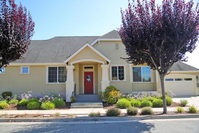 447 Vivienne Dr, Watsonville, CA 95076 (#ML81761353) :: Maxreal Cupertino